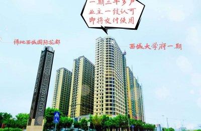 南宁西城大学府属哪类的楼盘,开发商实力如何?