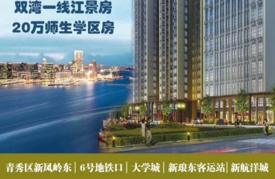 青秀区新凤岭东·单价3980元/m²起·南宁安置房盛世京都